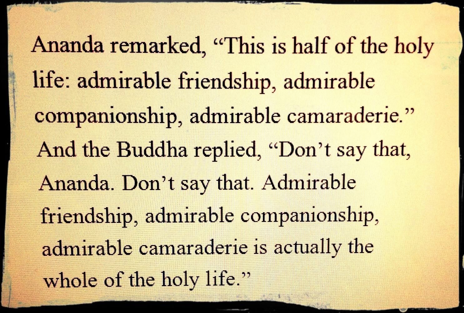 Buddha Quotes About Friendship Separation  The Metta Garden